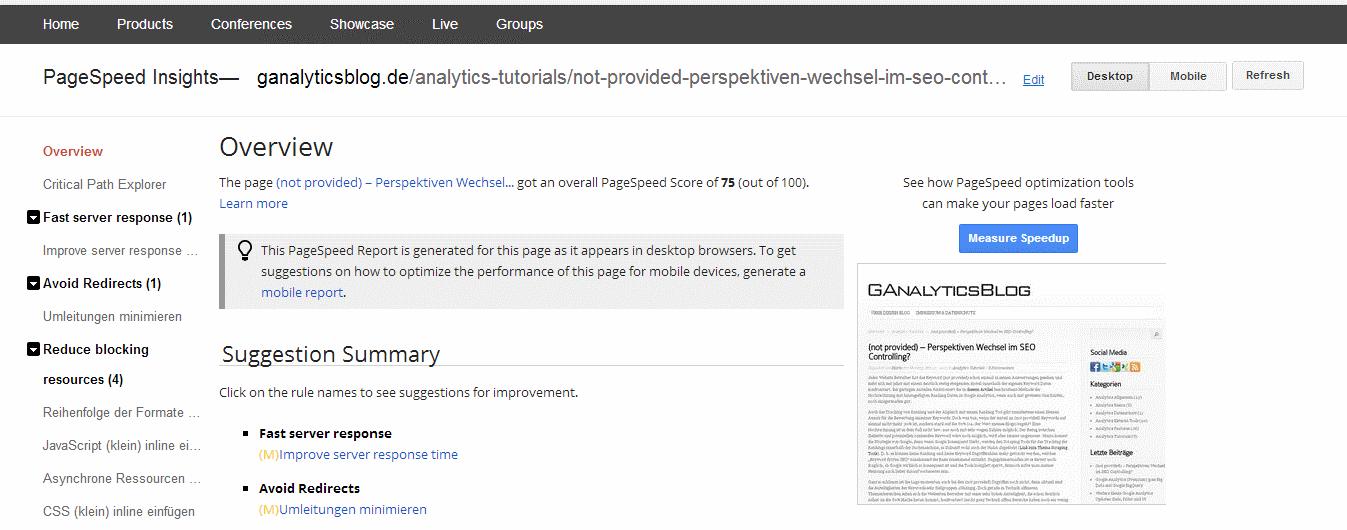 Der detaillierte Report der Pagespeed Analyse